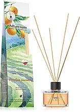 Kup Dyfuzor zapachowy Brazylijska pomarańcza z patyczkami - Allvernum Home&Essences Diffuser