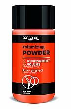 Kup Puder zwiększający objętość włosów - Prosalon Volumizing Powder