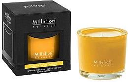 Kup Świeca zapachowa Las i polne kwiaty - Millefiori Milano Natural Candle Legni e Fiori d'Arancio