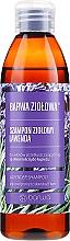 Kup Szampon ziołowy do włosów tłustych i skłonnych do łupieżu Lawenda - Barwa Herbal Lavender Shampoo