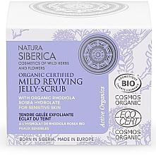 Kup Żelowy peeling do cery wrażliwej - Natura Siberica Organic Certified Mild Reviving Jelly-Scrub