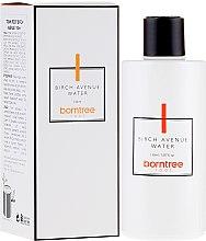 Kup Odświeżająca woda do twarzy - Borntree Root Birch Avenue Water