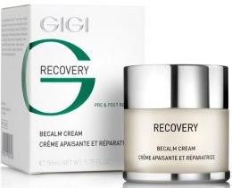 Kup Kojący krem nawilżający - Gigi Recovery Becalm Cream