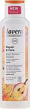 Kup Szampon do regeneracji i pielęgnacji suchych włosów - Lavera Repair & Care Shampoo