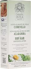 Kup Spray do rozjaśniania włosów na ciele z wyciągiem z rumianku - Intea Body Hair Lightening Spray With Natural Camomile Extract