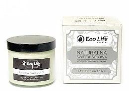 Kup Zapachowa świeca Powiew świeżości - Eco Life Candles