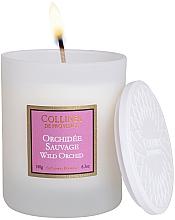 Kup Świeca zapachowa Dzika orchidea - Collines De Provence Wild Orchid Scented Candle