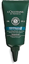Kup Oczyszczająca esencja do włosów - L'Occitane Aromachologie Purifying Freshness Rebalancing Scalp Essence