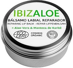 Kup Nawilżająca pomadka do ust - Ibizaloe Repairing Lip Balm