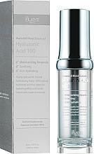 Kup Nawilżające serum do twarzy z kwasem hialuronowym - The Plant Base Waterfall Moist Balanced Hyaluronic Acid 100
