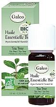 Kup Olejek z drzewa herbacianego - Galeo Organic Essential Oil Tea Tree