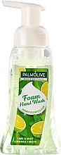 Kup Nawilżające mydło do rąk w piance Limetka i mięta - Palmolive Magic Softness Lime And Mint