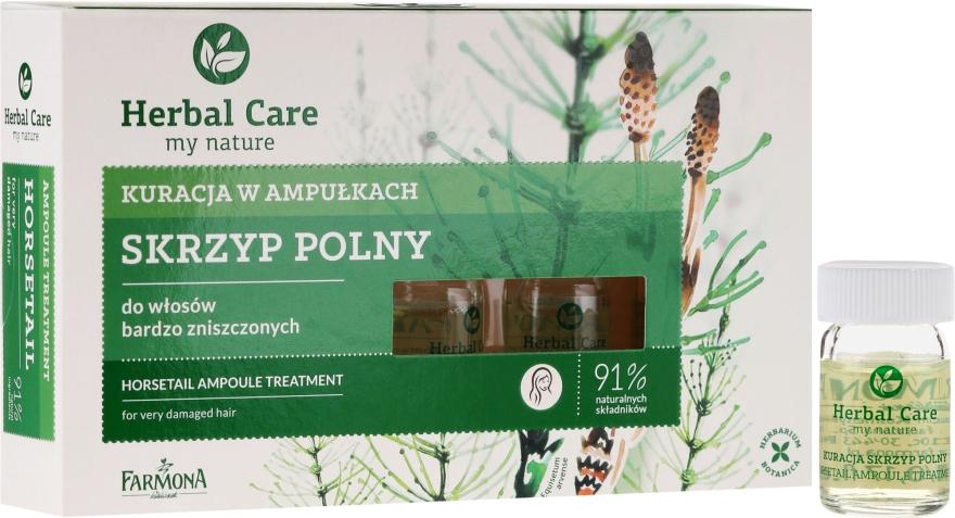 Kuracja w ampułkach do włosów bardzo zniszczonych Skrzyp polny - Farmona Herbal Care