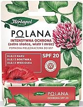 Kup Pielęgnująca pomadka do ust Intensywna ochrona - Polana