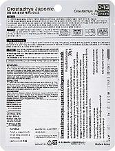 Kolagenowa esencjonalna maseczka do twarzy Rojnikowiec - Dermal Orostachys Japonica Collagen Essence Mask — фото N2