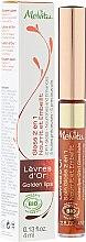 Kup Odżywczy balsam do ust 2 w 1 - Melvita Levres de Rose Lip Gloss