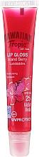 Kup Balsam do ust - Hawaiian Tropic Gloss Lip Gloss Island Berry SPF 25