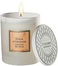 Kup Świeca zapachowa Kwiat pomarańczy - Collines De Provence Orange Blossom Scented Candle