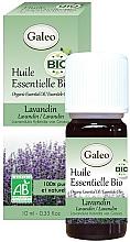 Kup Olejek eteryczny Lawenda - Galeo Organic Essential Oil Lavandin