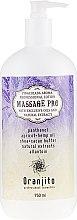 Kup Mleczko do masażu Pina colada - Oranjito Massage Pro Pina Colada Massage Body Milk