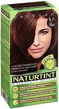 Kup Farba do włosów - Naturtint Permanent Hair Colour System