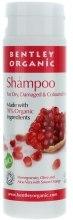Kup Szampon do włosów suchych, zniszczonych i farbowanych - Bentley Organic Shampoo For Dry, Damaged & Coloured Hair