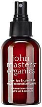 Kup Odżywka do włosów bez spłukiwania Zielona herbata i nagietek - John Masters Organics Green Tea & Calendula Leave-In Conditioning Mist