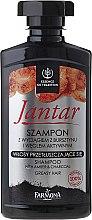 Kup Szampon detoksykujący z wyciągiem z bursztynu i węglem aktywnym do włosów przetłuszczających się - Farmona Jantar