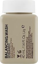 Kup Wzmacniający szampon do włosów farbowanych - Kevin.Murphy Balancing.Wash (miniprodukt)