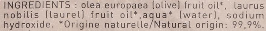 Mydło aleppo w kostce z olejem laurowym 12% - Tadé Laurel Aleppo Soap 12% — фото N3