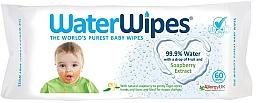 Kup Chusteczki nawilżane, 60 szt - The Cheeky Panda Water Wipes