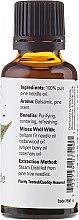 Olejek eteryczny Sosna - Now Foods Pine Needle Essential Oils — фото N2