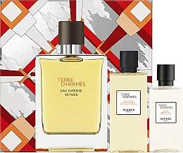 Kup Hermès Terre d'Hermès Eau Intense Vetiver Set - Zestaw dla mężczyzn (edp 100 ml + ash/lot 40 ml + sh/gel 80 ml)