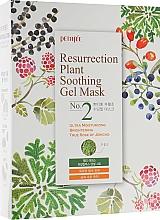 Kup Nawilżająca maska do twarzy dla skóry matowej i zmęczonej w płachcie - Petitfee & Koelf Resurrection Plant Soothing Gel Mask