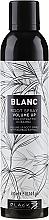 Kup Spray dodający włosom objętości z ekstraktem z bambusa - Black Professional Line Blanc Volume Up Root Spray