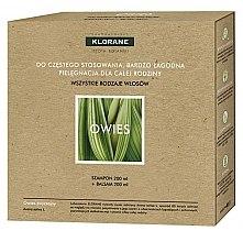 Kup Zestaw do włosów Pielęgnacja dla całej rodziny Owies - Klorane Oat Milk (shm 200 ml + hair/balm 200 ml)