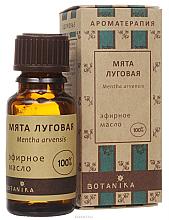 Kup Olejek eteryczny Mięta polna - Botanika Essential Oil