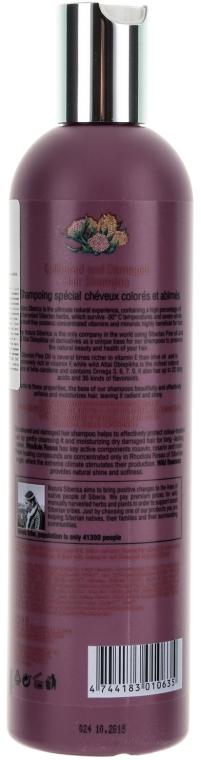 Szampon do włosów farbowanych i zniszczonych - Natura Siberica Coloured and Damaged Hair Shampoo — фото N2