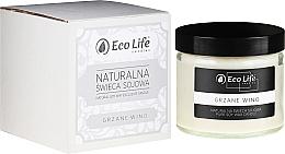 Kup Naturalna świeca sojowa Grzane wino - Eco Life Candles