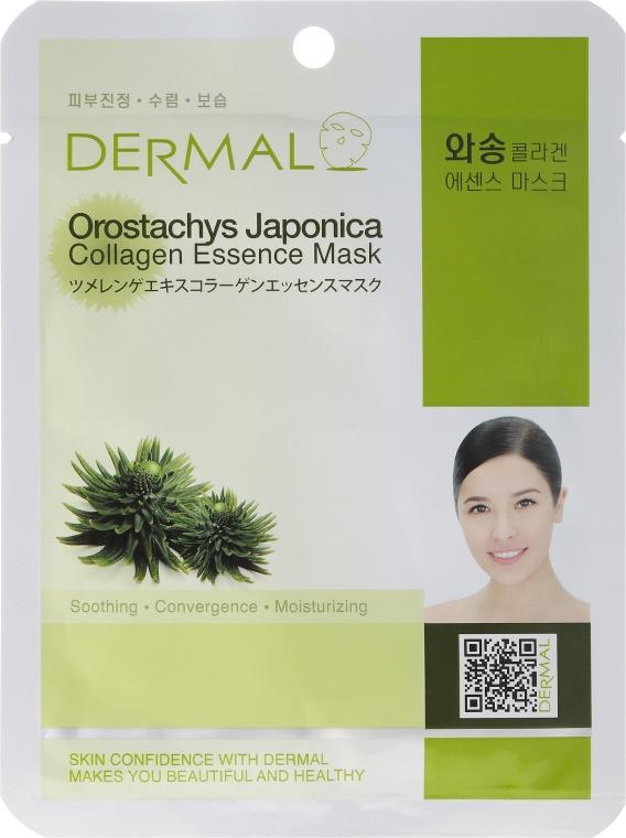 Kolagenowa esencjonalna maseczka do twarzy Rojnikowiec - Dermal Orostachys Japonica Collagen Essence Mask — фото N1
