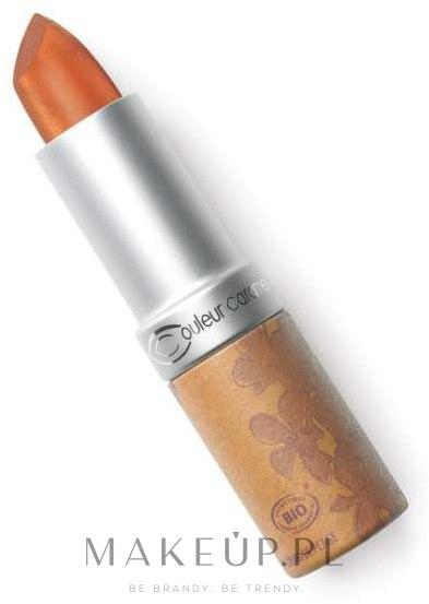 Szminka do ust - Couleur Caramel Rouge à Lèvres — фото 209 - Golden Bronze