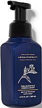 Kup Mydło w piance do rąk Wanilia i kokos - Bath and Body Works Aromatherapy Bergamot Chamomile Gentle Foaming Hand Soap
