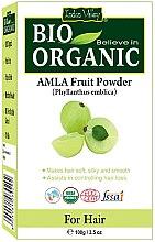 Kup Owocowy puder do włosów - Indus Valley Bio Organic Amla Fruit Powder