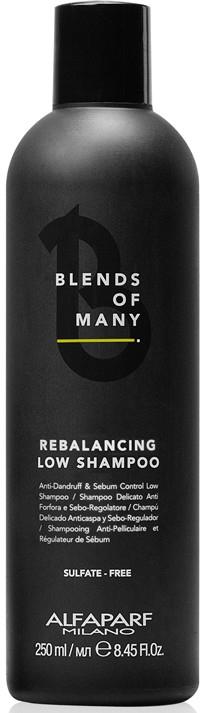 Szampon równoważący - Alfaparf Milano Blends Of Many Rebalancing Low Shampoo — фото N1