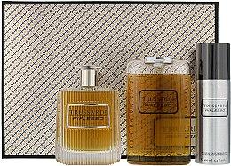 Kup Trussardi Riflesso Man Set - Zestaw dla mężczyzn (edt 100 ml + sh/gel 200 ml + deo/spray 100 ml)