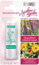 Kup Balsam do ust Rośliny łąkowe (nagietek i szałwia) - Luxvisage