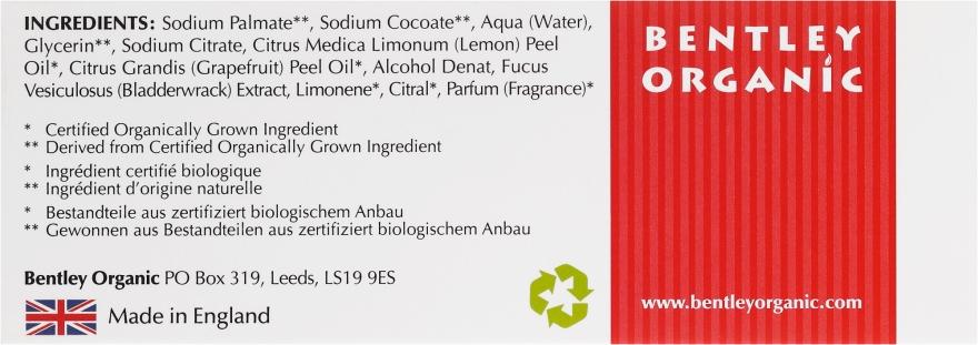 Mydło kosmetyczne Detox - Bentley Organic Body Care Detoxifying Soap Bar — фото N3