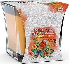 Kup Świeca zapachowa Tropikalny mix - White Swan Tropical Blend