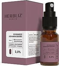 """Kup Spray do ust """"Czarna porzeczka"""" 2,5% - Herbliz CBD Oil Mouth Spray 2,5%"""