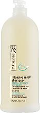 Kup PRZECENA! Szampon do włosów suchych i osłabionych - Black Professional Line Revitalising Shampoo *